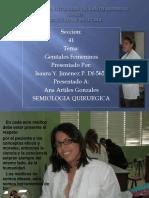 organosgenitales femeninos