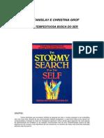 A tempestuosa busca do ser - Stanislav Grof