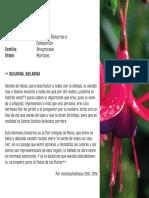zarcillejo.pdf