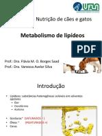 Metabolismo de Lipídeos