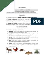 Guía Contenido Vertebrados e Invertebrados 2° básico.doc