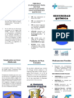 FOLLETO SEGURIDAD QUIMICA PDF