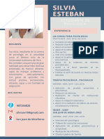 CV SILVIA ESTEBAN.pdf