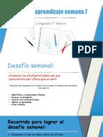 7° semana ruta de aprendizaje 3° básico Lenguaje