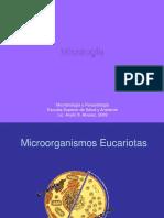 Enfermedades producidas por agentes biológicos