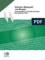 Bioheat, Biopower and Biogas
