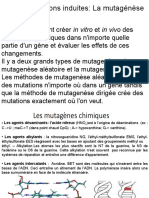 Mutagénèse 2020.ppt