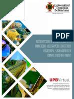 implementacion_pngbse.pdf