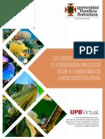 lineas_estrategicas.pdf