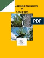 Plan Para La Creación de Zonas Boscosas en Tudela de Duero