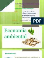 economia ambiental (1)