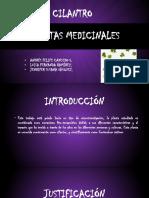 PLANTAS MEDICINALES PRESENTACIÓN