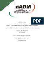 MIC_U1_A2_LACM (1).docx