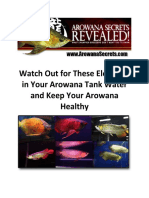 Arowana Care - Watch Out for These Elements in Your Arowana Tank Water and Keep Your Arowana Healthy