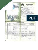 Трудовая книга Слободчикова.docx