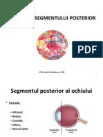 Examenul Segmentului Posterior_dr.branisteanu