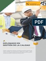 dip-gestion-de-la-calidad-2020.pdf