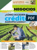 Revista Agronegocios 20.05.2020.pdf