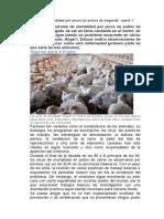 Síndrome de mortalidad por picos en pollos de engorde