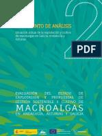 APROMAR-Algas_2-Documento-Analisis.pdf