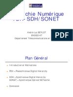 PDH.pdf