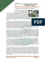 59810913-Resumen-La-Agroindustria-en-El-Peru-y-El-Desarrollo-Sostenible.pdf