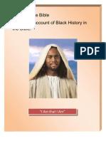 Blacks in the Bible