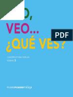 VeoVeo3
