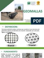Expo Geomallas.pdf