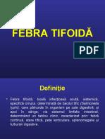 FEBRA TIFOIDA, DIZENTERIA, HOLERA.ppt
