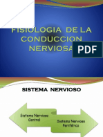 FISIOLOGIA  DE LA  CONDUCCION  NERVIOSA_3