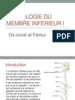 09-anato1an-osteologie_mb_inf-hamzaoui.pdf