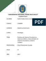 UNIVERSIDAD NACIONAL PEDRO RUIZ GALLO7