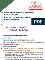 LG4 Pancreas