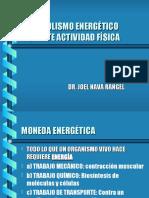 METABOLISMO DURANTE AF