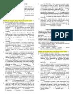 william_alvarez_6_6___6_7_(1_1)_montessori.docx