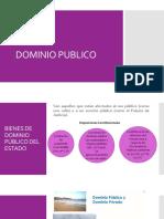 Dominio publico.pdf