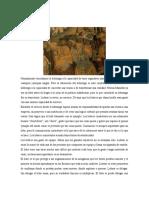 ARCHIVO (5)