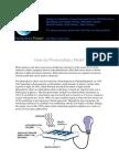 How Do Photovoltaics Work