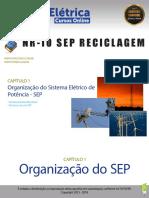 Organizacao_do_Sistema_Eletrico_de_Poten.pdf
