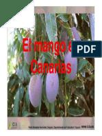 MangoCanarias.pdf