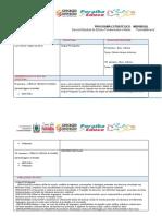 3-LUIS CARLOS Programa estratégico individual - Copia