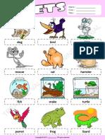 Share Animals Book.pdf · version 1