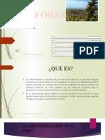 TEMA2.pptx