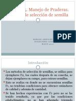 Clase+N°5.+Manejo+de+praderas,+Metodo+de+selección+de+semilla