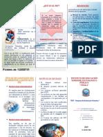 TRICTICO-PDT.docx