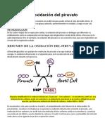 La oxidación del piruvato
