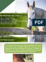 Biomecánica del caballo (2).pptx
