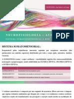 neurofisiologia aula 3.pptx