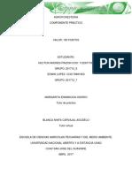 Practica de campo Agroforesteria1